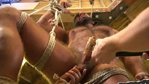 Muscly hunk edged and punished with toys