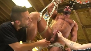 Ripped hunky slave getting edged